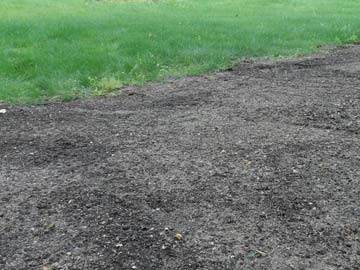 Newly seeded lawn patch