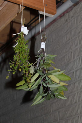 Dry herbs in small bunches