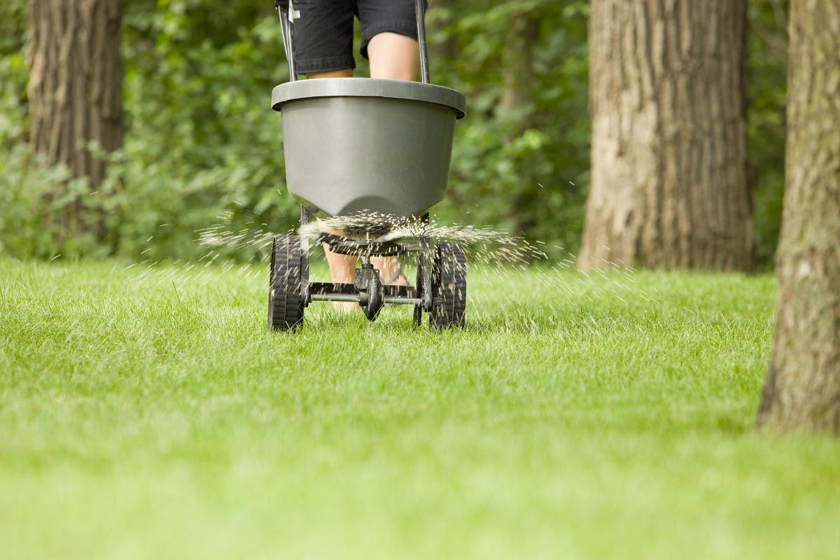 Applying lawn treatment