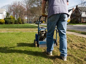 Dethatching a lawn.