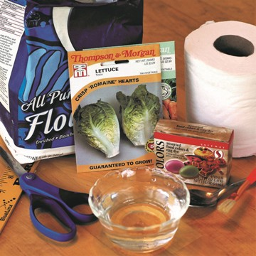 Supplies for making seed tape