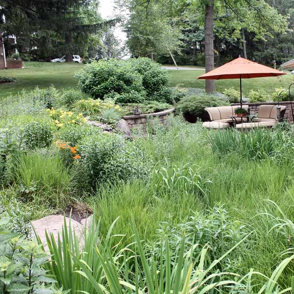 Gardening 101 • GreenView Fertilizer